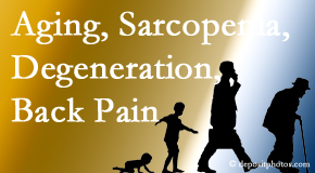 Most Chiropractic Clinic lessens a lot of back pain and sees a lot of related sarcopenia and back muscle degeneration.