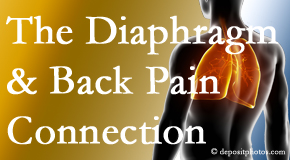 Most Chiropractic Clinic knows the relationship of the diaphragm to the body and spine and back pain.