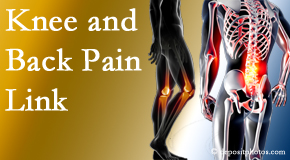 Most Chiropractic Clinic treats back pain and knee osteoarthritis to help avert falls.