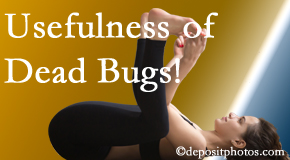 Most Chiropractic Clinic finds dead bugs quite useful in the healing process of Murfreesboro back pain for many chiropractic patients.
