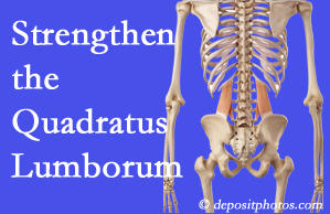 Murfreesboro chiropractic care proposes exercise recommendations to strengthen spine muscles like the quadratus lumborum as the back heals and recovers.