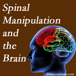 Most Chiropractic Clinic [presents research on the benefits of spinal manipulation for brain function.